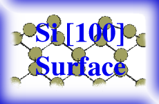 Theoretical Study of the Si(100) Surface